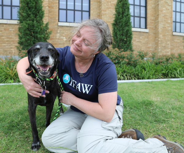 Caring for animals during Oklahoma's historic flooding