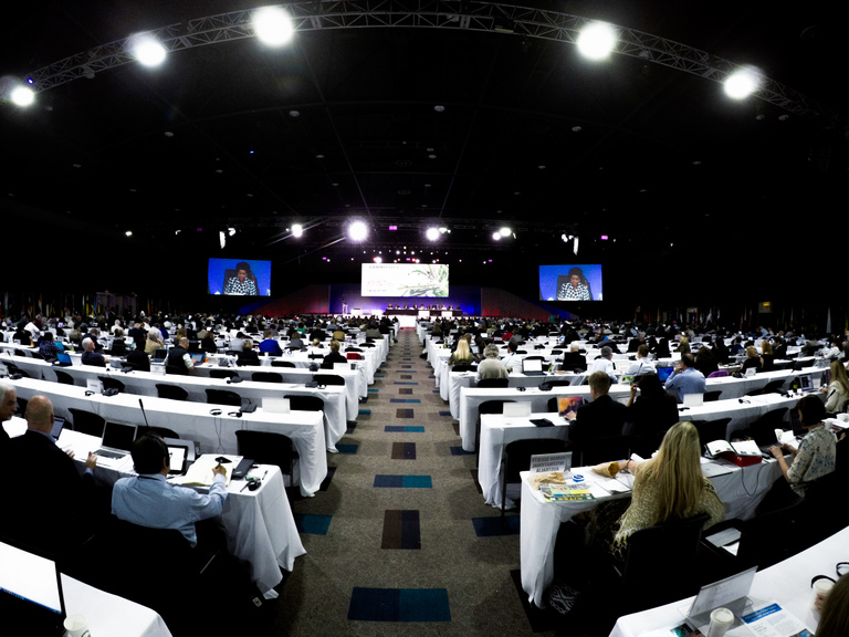 CITES Conference of the Parties | IFAW