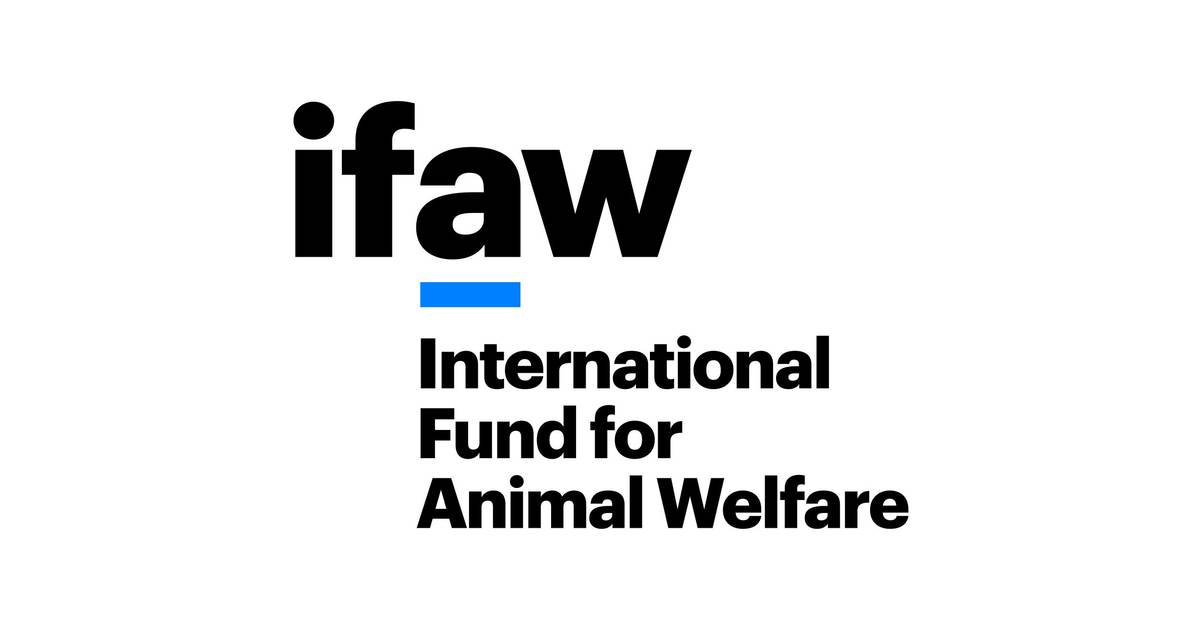 International Fund for Animal Welfare | IFAW