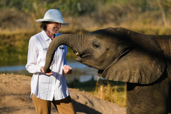 Anniversaire du sauvage d'Amira, l'éléphante