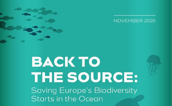 Press Briefing on Saving Europe's Biodiversity Starts in the Ocean