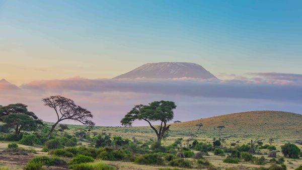 pourquoi la COP26 est-elle importante dans la lutte contre le changement climatique ?