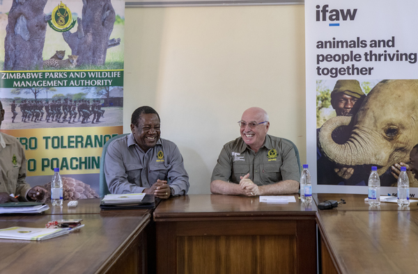 Zimbabwe signs wildlife conservation partnership with ifaw